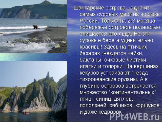 Шантарские острова - одно из самых суровых мест на востоке России. Только на 2-3 месяца побережье островов полностью очищается ото льда. Но эти суровые берега удивительно красивы! Здесь на птичьих базарах гнездятся чайки, бакланы, очковые чистики, и…
