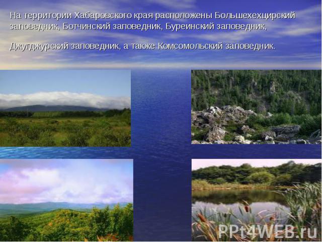 На территории Хабаровского края расположены Большехехцирский заповедник, Ботчинский заповедник, Буреинский заповедник, Джугджурский заповедник, а также Комсомольский заповедник.