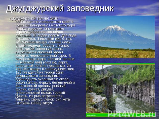 Джугджурский заповедникДжугджурский заповедник расположен в Хабаровском крае, в горах на побережье Охотского моря. В Джугджурском заповеднике зарегистрировано 480 видов растений, 18 видов редких, два вида охраняются. Животный мир богат. Из млекопита…