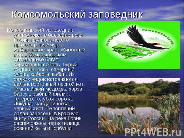 Комсомольский заповедникКомсомольский заповедник расположен в бассейне реки Горин, крупного левого притока реки Амур, в Хабаровском крае. Животный мир в Комсомольском заповеднике богат, характерны соболь, бурый медведь, лось, северный олень, кабарга…