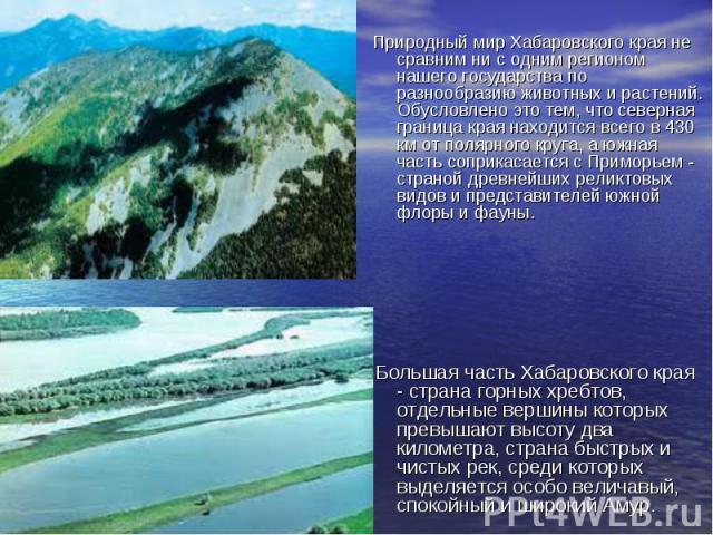 Природный мир Хабаровского края не сравним ни с одним регионом нашего государства по разнообразию животных и растений. Обусловлено это тем, что северная граница края находится всего в 430 км от полярного круга, а южная часть соприкасается с Приморье…