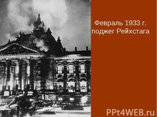 Февраль 1933 г. поджег Рейхстага