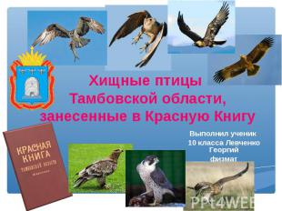 Хищные птицы Тамбовской области,занесенные в Красную Книгу Выполнил ученик 10 кл