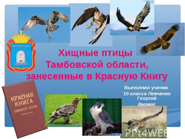 Хищные птицы Тамбовской области,занесенные в Красную Книгу Выполнил ученик 10 класса Левченко Георгийфизмат
