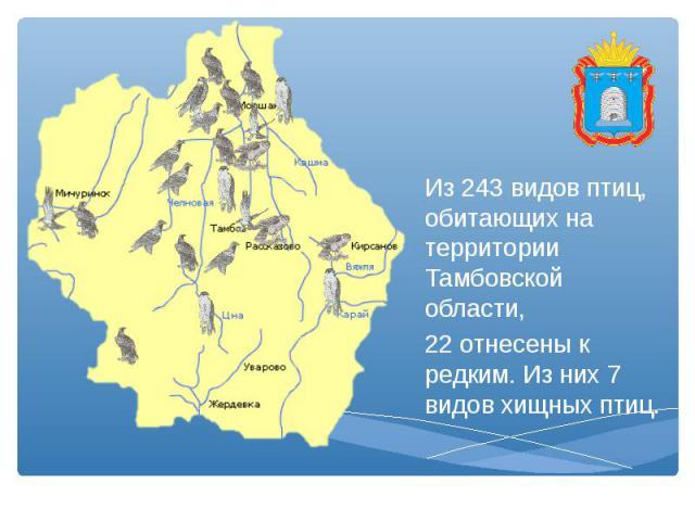 Из 243 видов птиц, обитающих на территории Тамбовской области, 22 отнесены к редким. Из них 7 видов хищных птиц.