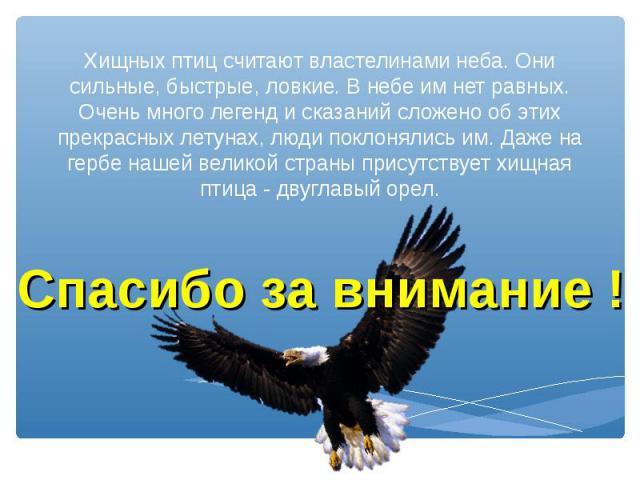 Хищных птиц считают властелинами неба. Они сильные, быстрые, ловкие. В небе им нет равных. Очень много легенд и сказаний сложено об этих прекрасных летунах, люди поклонялись им. Даже на гербе нашей великой страны присутствует хищная птица - двуглавы…