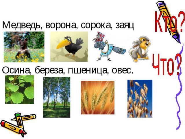 Медведь, ворона, сорока, заяцОсина, береза, пшеница, овес.