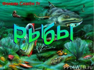 Фомин Семён 7г Рыбы