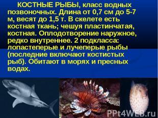 КОСТНЫЕ РЫБЫ, класс водных позвоночных. Длина от 0,7 см до 5-7 м, весят до 1,5 т