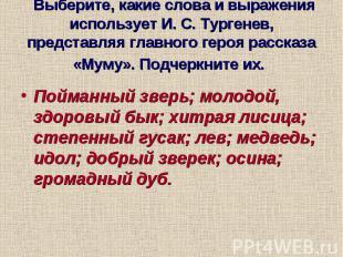 Выберите, какие слова и выражения использует И. С. Тургенев, представляя главног
