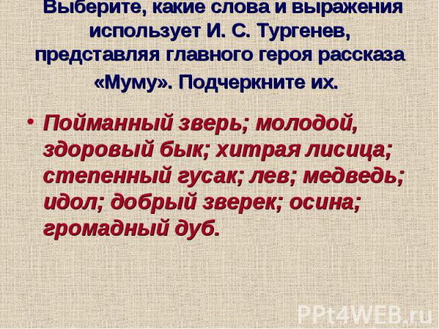 Выберите, какие слова и выражения использует И. С. Тургенев, представляя главного героя рассказа «Муму». Подчеркните их. Пойманный зверь; молодой, здоровый бык; хитрая лисица; степенный гусак; лев; медведь; идол; добрый зверек; осина; громадный дуб.