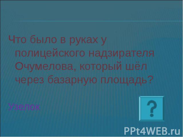 Что было в руках у полицейского надзирателя Очумелова, который шёл через базарную площадь? Узелок