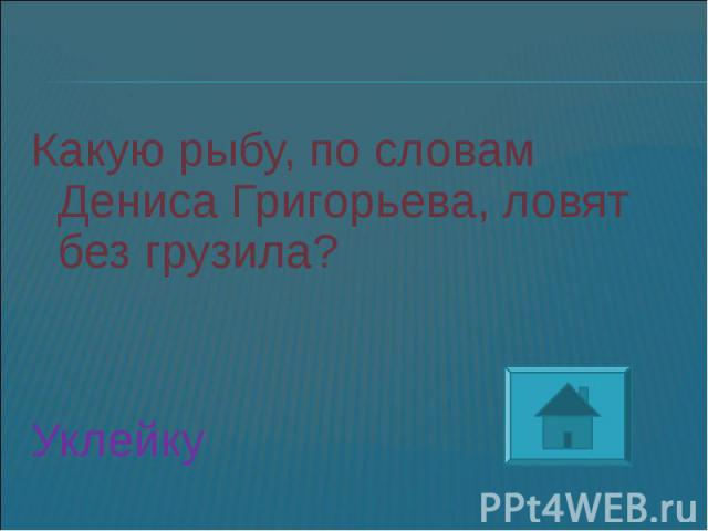 Какую рыбу, по словам Дениса Григорьева, ловят без грузила?Уклейку