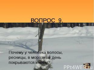 ВОПРОС 9.Почему у человека волосы, ресницы, в морозный день покрываются инеем?