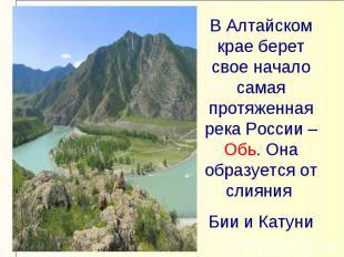В Алтайском крае берет свое начало самая протяженная река России – Обь. Она обра