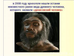 в 2008 году археологи нашли останки неизвестного ранее вида древнего человека, к