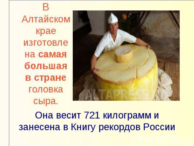 В Алтайском крае изготовлена самая большая в стране головка сыра.Она весит 721 килограмм и занесена в Книгу рекордов России