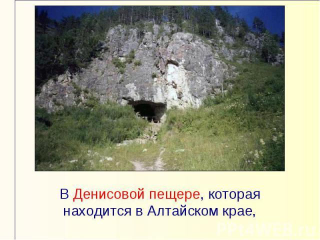 В Денисовой пещере, которая находится в Алтайском крае,