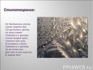 Стихотворение:Не дождавшись тепла,Среди зимнего дня,Распустились цветы,На окне у