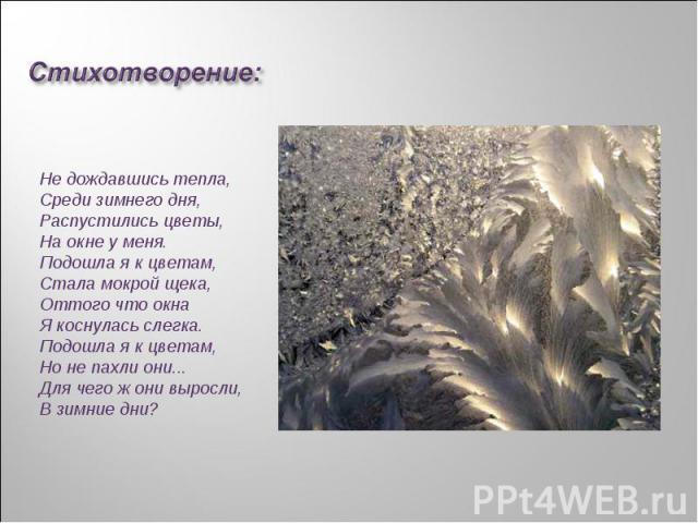 Стихотворение:Не дождавшись тепла,Среди зимнего дня,Распустились цветы,На окне у меня.Подошла я к цветам,Стала мокрой щека,Оттого что окнаЯ коснулась слегка.Подошла я к цветам,Но не пахли они...Для чего ж они выросли,В зимние дни?