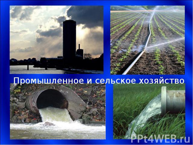 Промышленное и сельское хозяйство