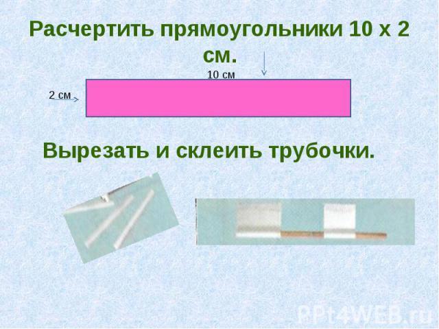 Расчертить прямоугольники 10 х 2 смВырезать и склеить трубочки..