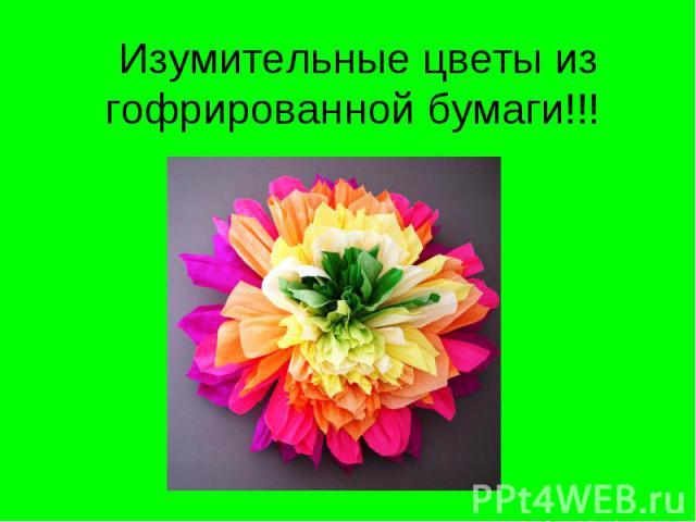 Изумительные цветы из гофрированной бумаги!!!