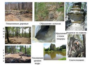 Поваленные деревья Обрушение склоновОбрушение стенок пещерыПонижение уровня воды