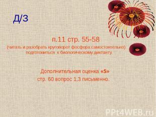 Д/З п.11 стр. 55-58 (читать и разобрать круговорот фосфора самостоятельно) подго