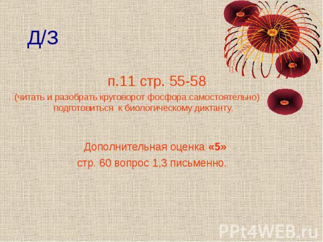 Д/З п.11 стр. 55-58 (читать и разобрать круговорот фосфора самостоятельно) подготовиться к биологическому диктанту. Дополнительная оценка «5» стр. 60 вопрос 1,3 письменно.