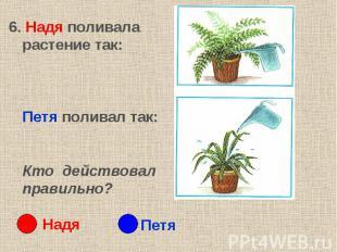 6. Надя поливала растение так: Петя поливал так:Кто действовал правильно?
