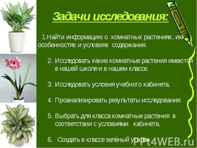 Задачи исследования: Найти информацию о комнатных растениях, их особенностях и условиях содержания.Исследовать какие комнатные растения имеются в нашей школе и в нашем классе.Исследовать условия учебного кабинета.Проанализировать результаты исследов…