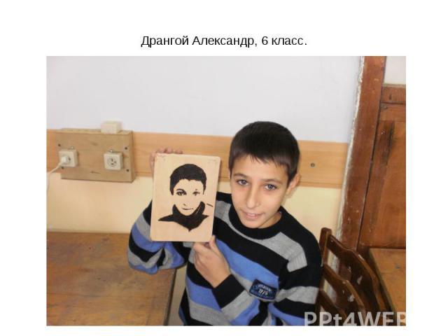 Дрангой Александр, 6 класс.