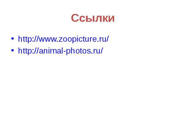 Ссылкиhttp://www.zoopicture.ru/http://animal-photos.ru/