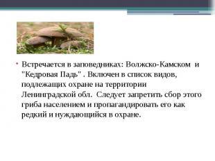 """Встречается в заповедниках: Волжско-Камском и """"Кедровая Падь"""" . Включен в список"""