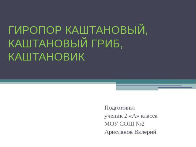 Гиропор каштановый, каштановый гриб, каштановик Подготовилученик 2 «А» класса МОУ СОШ №2 Арисланов Валерий
