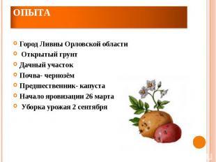 Место и сроки проведения опытаГород Ливны Орловской области Открытый грунтДачный
