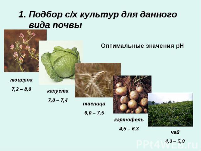 Подбор с/х культур для данного вида почвыОптимальные значения рН