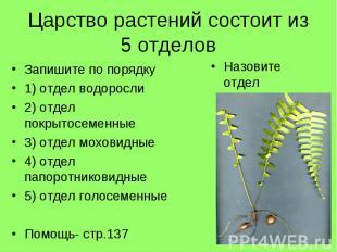Царство растений состоит из 5 отделовЗапишите по порядку1) отдел водоросли2) отд