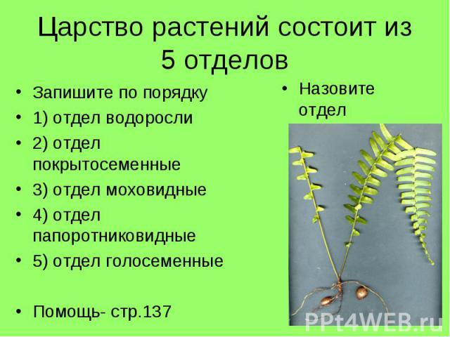 Царство растений состоит из 5 отделовЗапишите по порядку1) отдел водоросли2) отдел покрытосеменные3) отдел моховидные4) отдел папоротниковидные5) отдел голосеменныеПомощь- стр.137