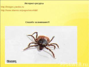 Интернет-ресурсыhttp://images.yandex.ruhttp://www.slanmo.ru/pages/encefalit/Спас