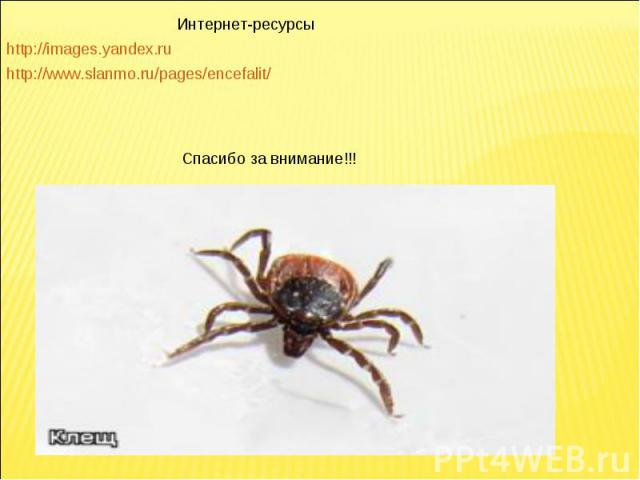 Интернет-ресурсыhttp://images.yandex.ruhttp://www.slanmo.ru/pages/encefalit/Спасибо за внимание!!!