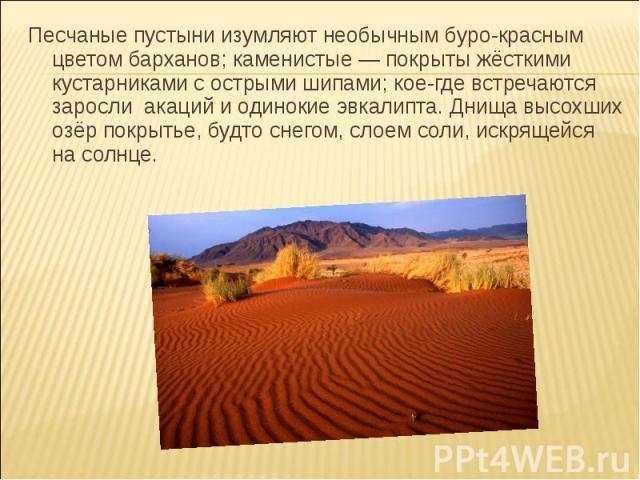 Песчаные пустыни изумляют необычным буро-красным цветом барханов; каменистые — покрыты жёсткими кустарниками с острыми шипами; кое-где встречаются заросли акаций и одинокие эвкалипта. Днища высохших озёр покрытье, будто снегом, слоем соли, искрящейс…