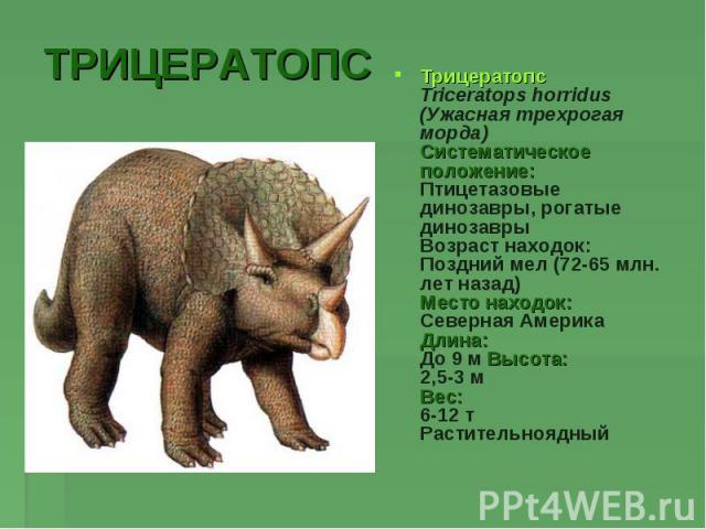 ТРИЦЕРАТОПСТрицератопсTriceratops horridus (Ужасная трехрогая морда)Систематическое положение:Птицетазовые динозавры, рогатые динозаврыВозраст находок:Поздний мел (72-65 млн. лет назад)Место находок:Северная АмерикаДлина:До 9 м Высота:2,5-3 мВес:6-1…