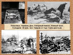 Поволжье, Украина, Дон, Северный Кавказ, Южный Урал.Голодали 30 млн. чел. Умерли