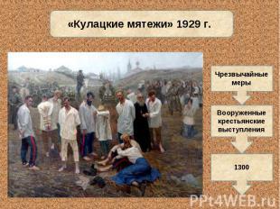 «Кулацкие мятежи» 1929 г.