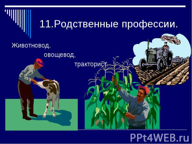 11.Родственные профессии.Животновод, овощевод, тракторист.
