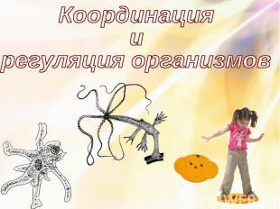 Координация и регуляция организмов