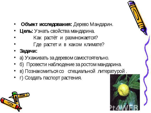 Объект исследования: Дерево Мандарин.Цель: Узнать свойства мандарина. Как растёт и размножается? Где растет и в каком климате?Задачи: а) Ухаживать за деревом самостоятельно.б) Провести наблюдение за ростом мандарина.в) Познакомиться со специальной л…