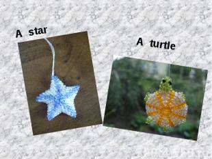 A starA turtle